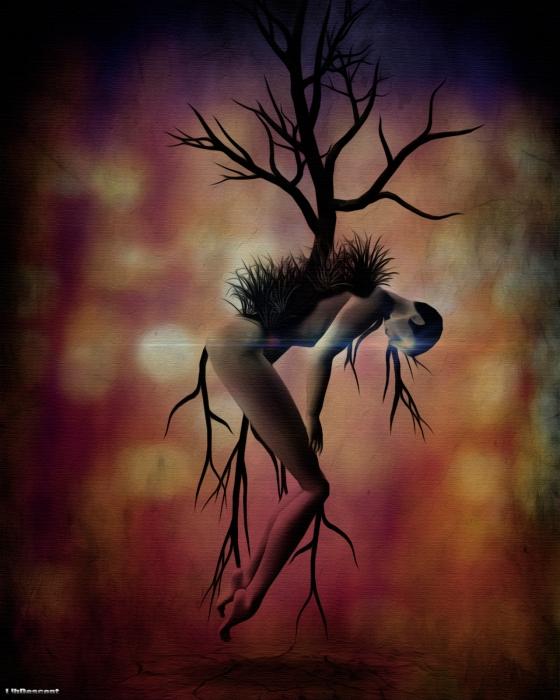 lib_tree